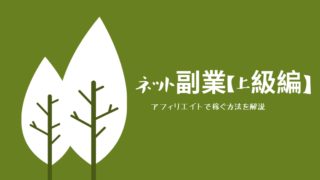 ネット副業【上級編】の解説