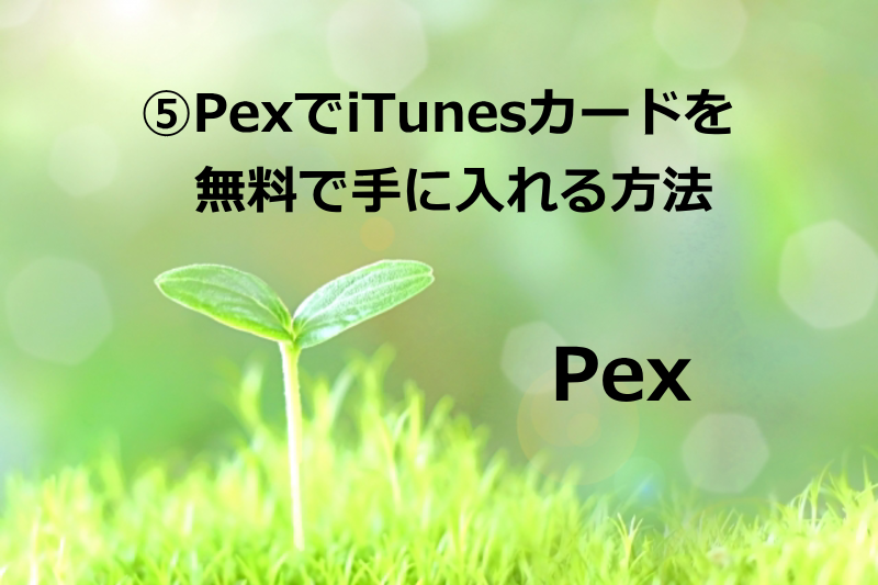 ⑤PexでiTunesカードを無料で手に入れる方法